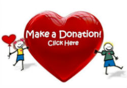 Make-a-Donation-Button